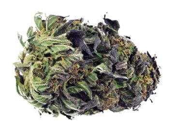 buy synthetic weed online